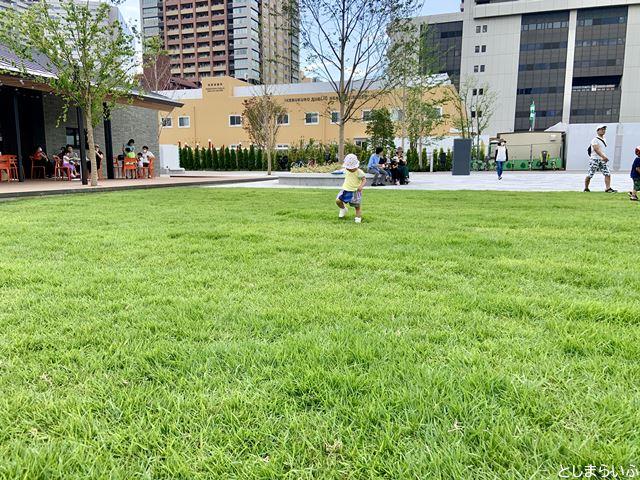 イケサンパーク 芝生で遊ぶ子供