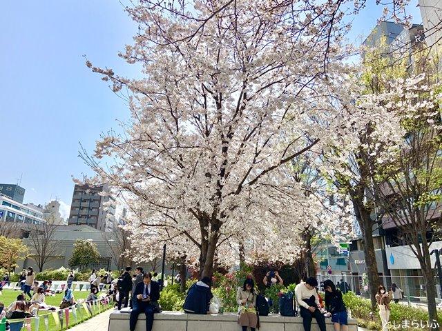 南池袋公園の桜の下でくつろぐ人々