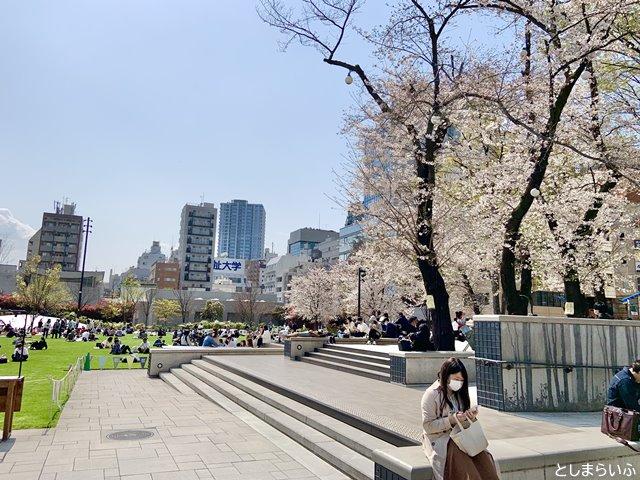 桜が満開の南池袋公園