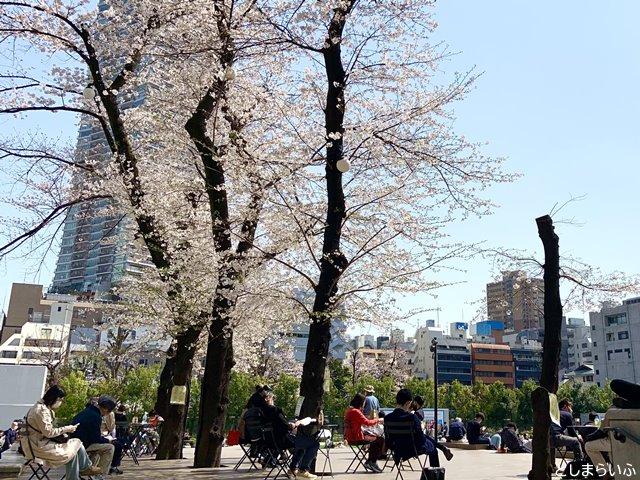 南池袋公園 サクラテラスの桜