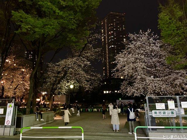南池袋公園 入り口の夜桜